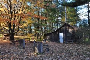 EDPE Fall at the Leopold Shack