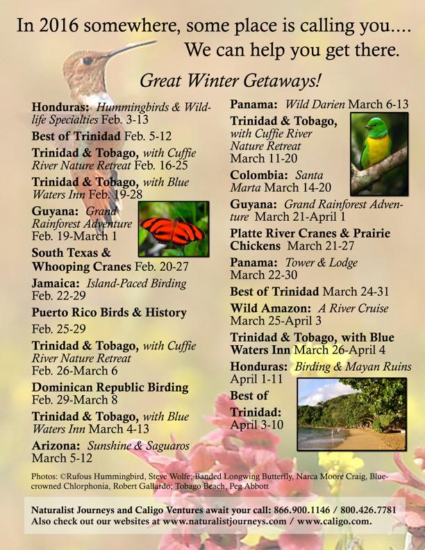 2016 Winter Getaways